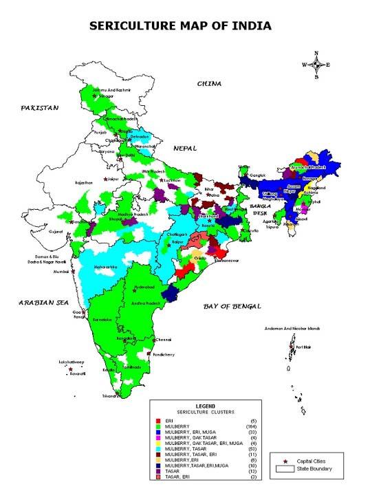 Crafts Sites India